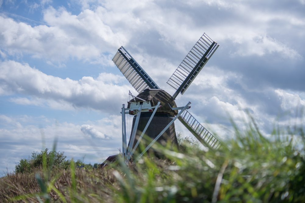 List of Free Dutch Language Learning Resources